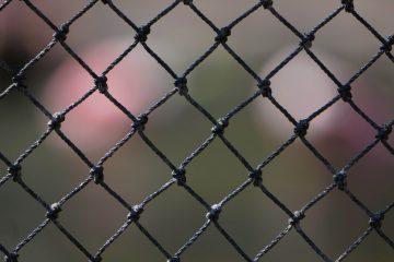 Ein Ausschnitt eines Maschendrahtzauns.