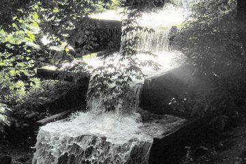 Wassertreppe in Planten un Blomen.