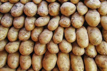 Dieses ungewöhnliche Motiv musste festgehalten werden, aufgestapelte Kartoffeln auf dem Wochenmarkt.