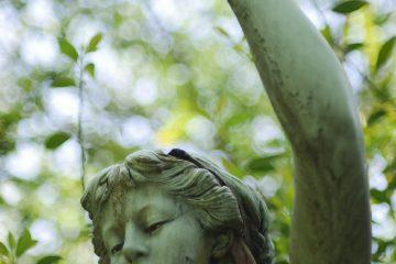 Susanne - Ohlsdorfer Friedhof 03.06.2020 - Foto 7