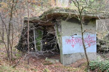 Wolfgang Scheffler - Geesthacht 29.11.2020 - Ruine