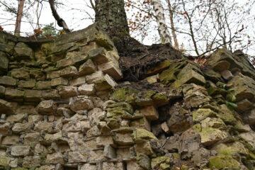 Petra Scheffler - Geesthacht 29.11.2020 - Die Mauer hält den Baum
