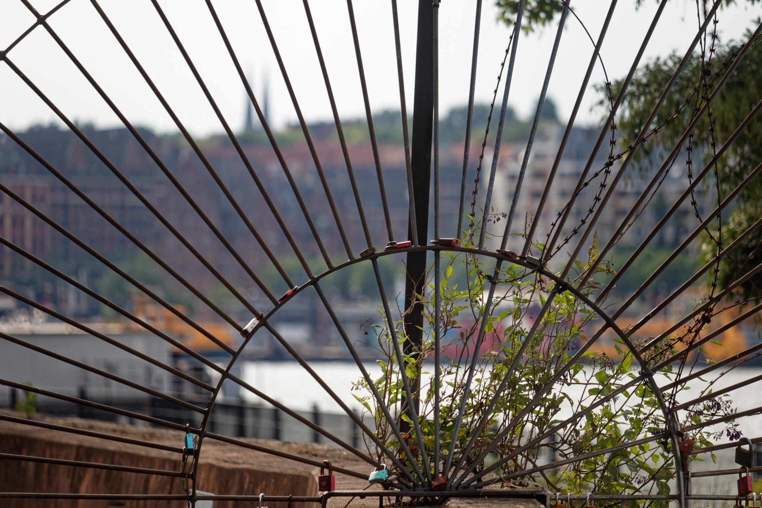 Bodo Jarren - Feierabendtour 24.06.2021 - Liebesschlossfächer