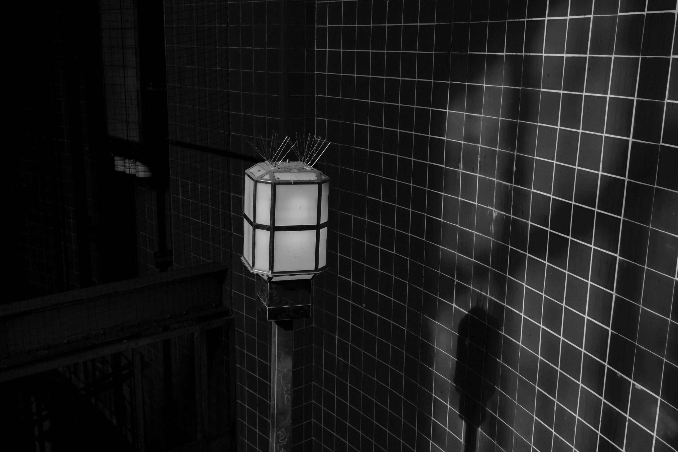 Brigitte - Feierabendtour 24.06.2021 - Wo Licht ist, ist auch Schatten