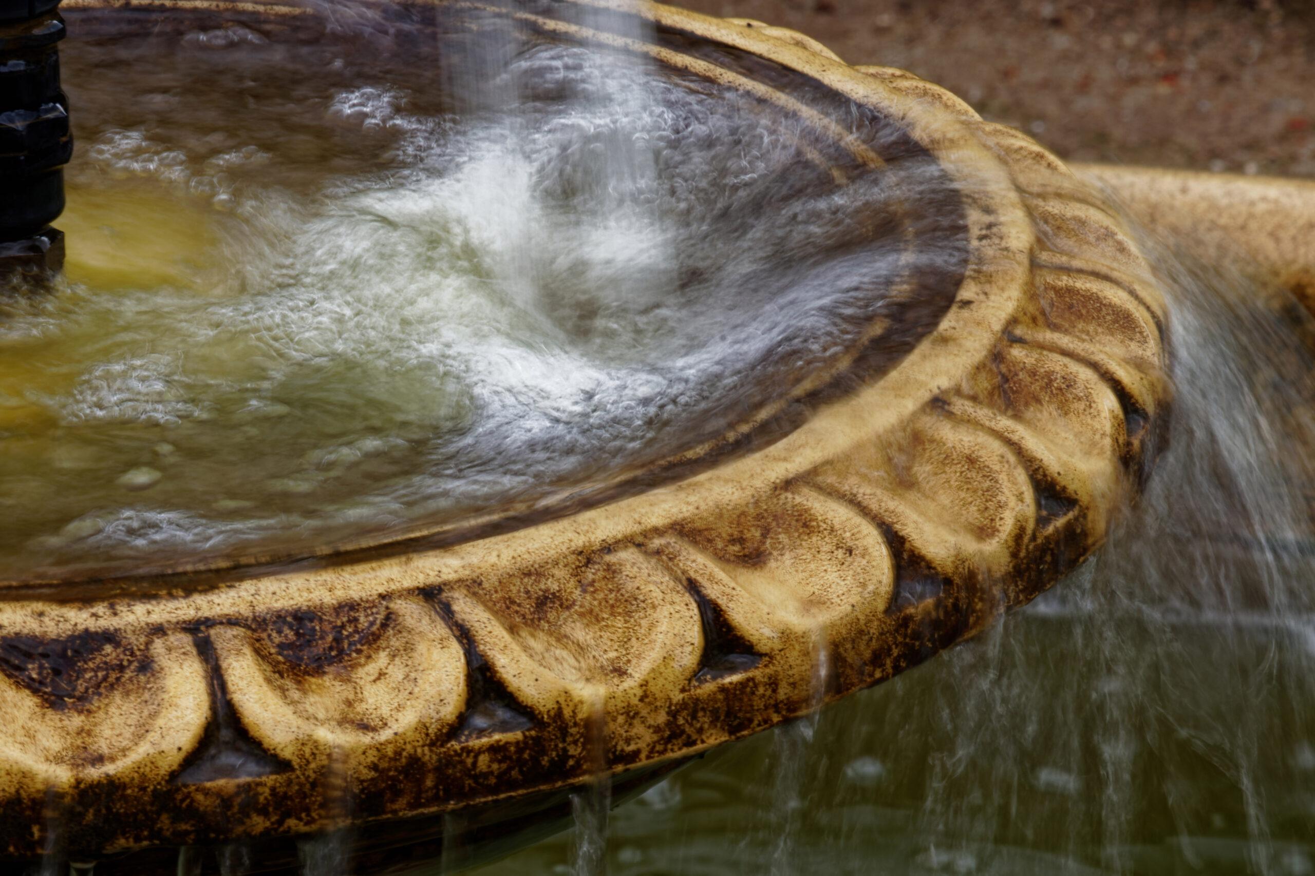 Bodo Jarren- Arboretum Ellerhoop 03.08.2021 - Am Brunnen