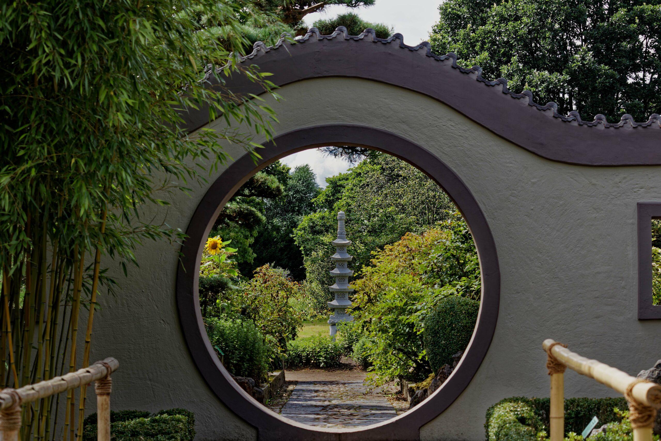Bodo Jarren- Arboretum Ellerhoop 03.08.2021 - Durchblick