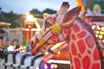Susanne Wahl - DOM 12.08.2021 - DOM Giraffe