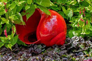 Hans Stötera - Arboretum Ellerhoop 03.08.2021 - Grosses rotes Schneckenhaus