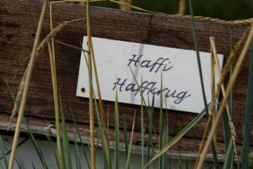 Bodo Jarren - Haffkrug 24.08.2021 - Haffi