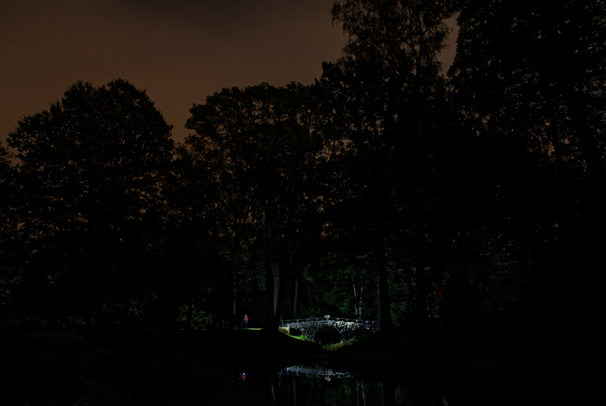 Matthias - Eiserne Brücke Ohlsdorfer Friedhof 17.09.2021 - Ohlsdorfer Friedhof Fußgängerbrücke Südteich